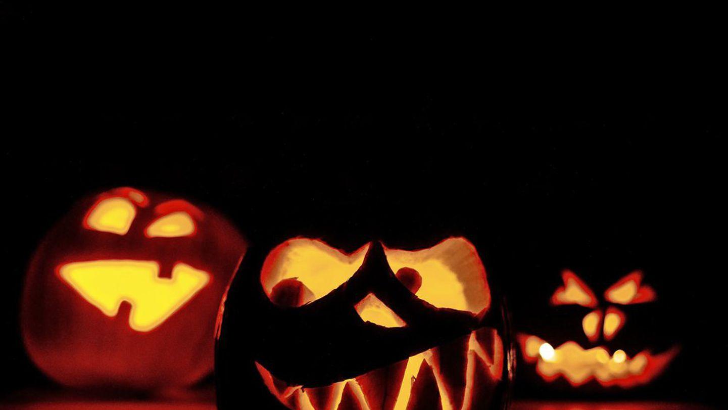 Halloween Deko Fur Draussen Und Drinnen So Erklaren Sie Ihr Haus Zur Gruselzone