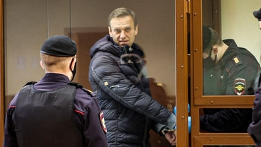 Bildergebnis für Berufung gescheitert: Nawalny muss ins Straflager